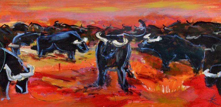 Stiere auf Weide
